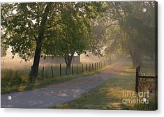 Alabama Country Road Acrylic Print by Don F  Bradford