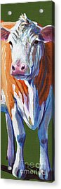 Acrylic Print featuring the painting Alabama Cow by Pat Burns