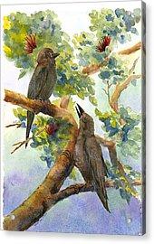 'alala Acrylic Print by Wicki Van De Veer
