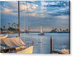 Alamitos Bay Inlet Sailboat Acrylic Print
