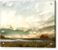 Alan Fresh Creek Acrylic Print by Glenn Gemmell