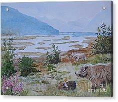 Alaska - Denali 2 Acrylic Print