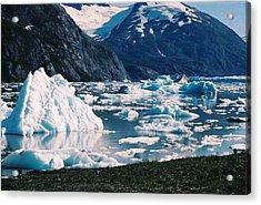 Acrylic Print featuring the photograph Alaska In The Spring by Judyann Matthews