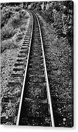 Acrylic Print featuring the photograph Alaska Tracks by Lucian Capellaro