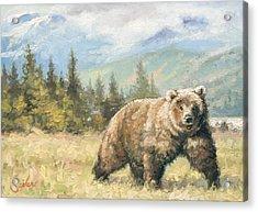 Alaskan Brownie Acrylic Print by Larry Seiler