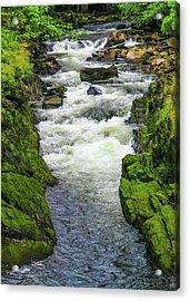 Alaskan Creek Acrylic Print