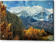 Alaskan Fall 1 Acrylic Print by Marty Koch