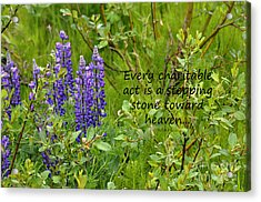 Acrylic Print featuring the photograph Alaskan Lupine Heaven by Diane E Berry