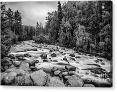 Alaskan Stream In Black And White Acrylic Print
