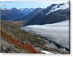 Alaska's Exit Glacier Acrylic Print