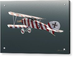 Albatros D.iii Of Jasta 11 Acrylic Print by David Collins