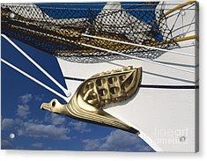 Acrylic Print featuring the photograph Albatross Figurehead by Heiko Koehrer-Wagner
