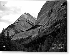 Acrylic Print featuring the photograph Alberta, 2015 by Elfriede Fulda