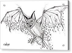 Alef Bat Gimmel Acrylic Print