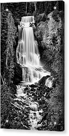 Acrylic Print featuring the photograph Alexander Falls - Bw 2 by Stephen Stookey