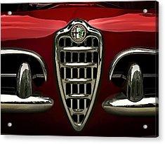 Alfa Red Acrylic Print by Douglas Pittman