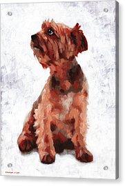 Alfie Acrylic Print by Douglas Simonson