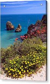 Algarve Coast In Spring Acrylic Print by John McKinlay