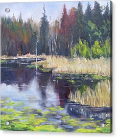 Algonquin Marsh Acrylic Print by Diane Daigle
