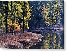Algonquin Sunrise Reflection Acrylic Print