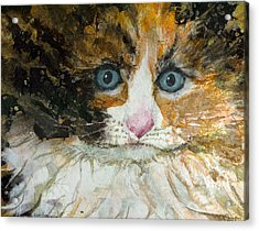 Acrylic Print featuring the painting Ali Cat 1 by Lynn Babineau