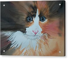 Acrylic Print featuring the painting Ali Cat Abstract by Lynn Babineau