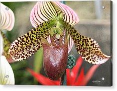 Alien Flower Acrylic Print