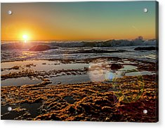 Aliso Point With Flare Acrylic Print