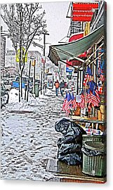 All American Snow Acrylic Print by Terry Cork