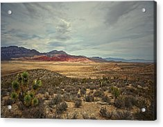 Acrylic Print featuring the photograph All Day by Mark Ross