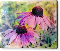 All Delights Are Vain Acrylic Print by Karen Brown