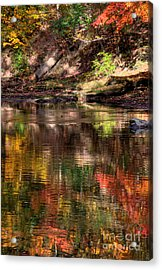 All I See Is Color Acrylic Print by Tony  Bazidlo