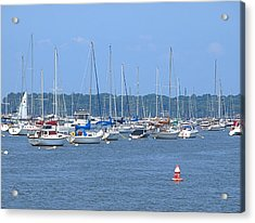 Acrylic Print featuring the photograph All In Line by Newwwman