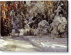 All Roads Lead Home Acrylic Print by Sabine Jacobs