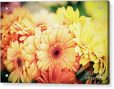 Acrylic Print featuring the photograph All The Daisies by Ana V Ramirez