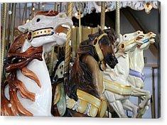 All The Pretty Horses Acrylic Print by Anne Babineau