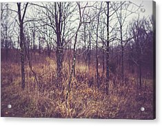 Acrylic Print featuring the photograph All The While by Shane Holsclaw