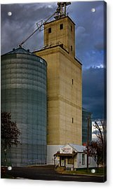 Acrylic Print featuring the photograph All Things by Albert Seger