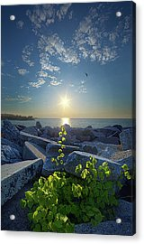 All Things Are Possible Acrylic Print by Phil Koch