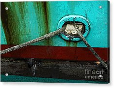 All Tied Up Acrylic Print by Bob Christopher
