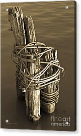 All Tied Up Acrylic Print by Gordon Wood