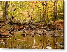 Allegheny Fall Acrylic Print by Eric Foltz