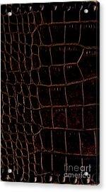 Alligator Look Abstract Acrylic Print by Marsha Heiken
