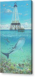 Alligator Reef Lighthouse Acrylic Print