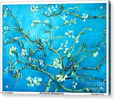 Almond Blossom Acrylic Print by Eric  Schiabor