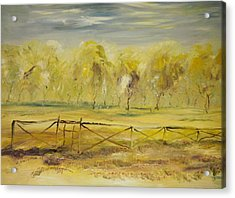 Almond Trees In Summer Acrylic Print by Edward Wolverton