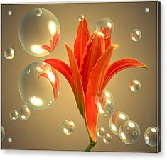 Almost A Blossom In Bubbles Acrylic Print by Joyce Dickens