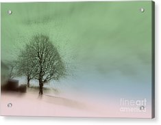 Acrylic Print featuring the photograph Almost A Dream - Winter In Switzerland by Susanne Van Hulst