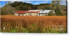 Almost Autumn Acrylic Print by Benanne Stiens