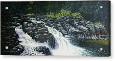 Almost Home - Lucia Falls Acrylic Print by Ron Smothers